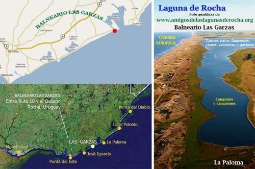 Fotos de Vendo lote de terreno en el balneario las garzas - laguna rocha - la paloma - ur 1