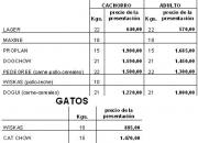 VENTA DE ALIMENTO BALANCEADO PERROS Y GATOS