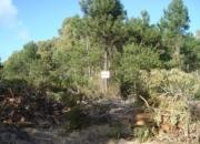 Vendo dos terrenos en Anaconda, La  Paloma