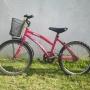 bicicleta twiggy rodado 20