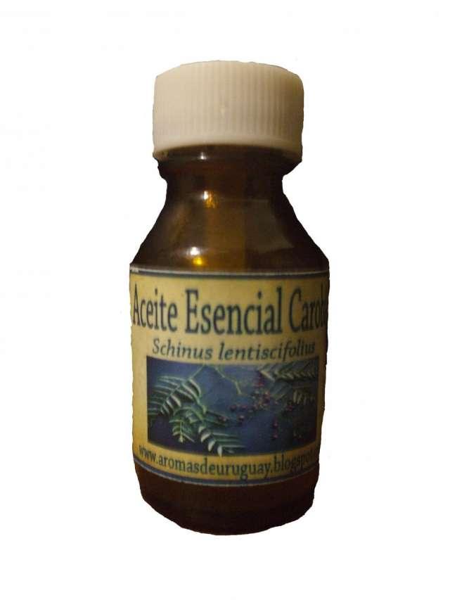 Aceites esenciales de plantas nativas del uruguay