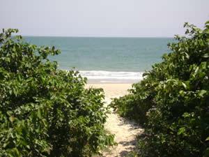 lagoinha dos casas sobre la playa frente al mar disponibles
