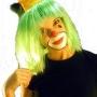 Articulos para el clown, payaso
