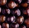 Tienda acai berry