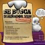 HORNITORRINGO BUSCA DISEÑADOR WEB!