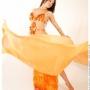 Clases de danzas árabes