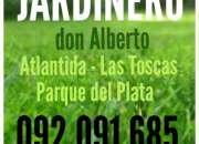 Desmalezado 092 091 685 jardines