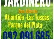Jardinero 092 091 685 desmalezado