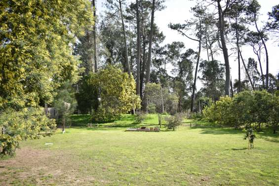Casa en hermoso terreno de esquina en jardines de córdoba.
