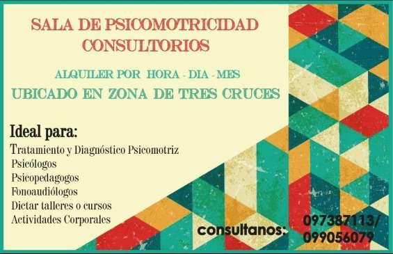 Alquiler consultorios y sala de psicomotricidad