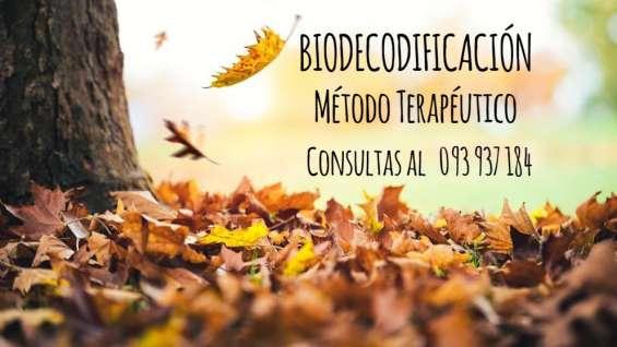Biodecodificación terapia