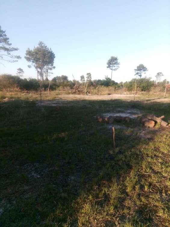 Vendo terreno 700 mts en pinamar norte 90 mil pesos